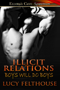 illicitrelations
