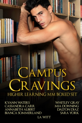 CampusCravings_HigherLearningMMBoxedSet_eBookCover600x900