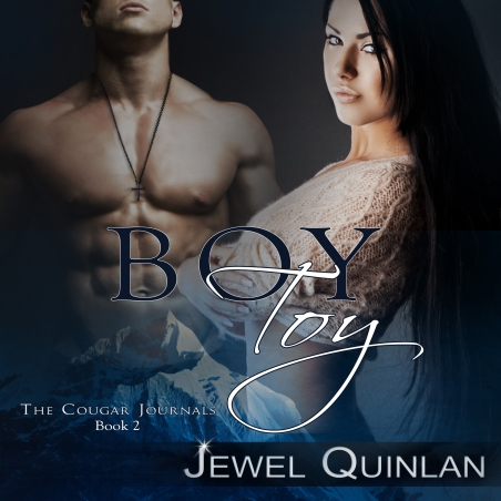boy toy audio book high res