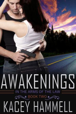 KH_Awakenings_V1_400X600