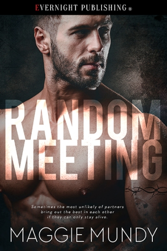 randommeeting-efvernightpublishing-dec2016-smallpreview